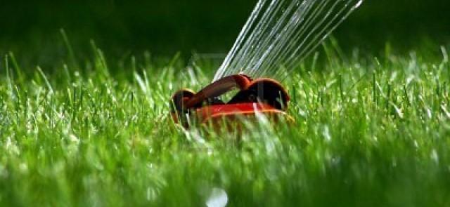 podlewanie trawnika zraszacz do trawnika