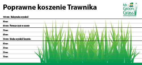 jak poprawnie kosić trawnik